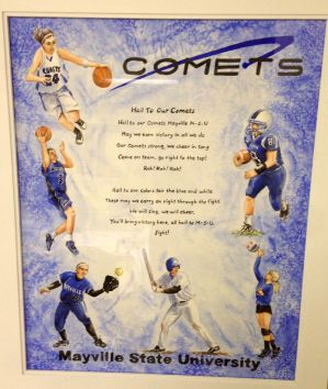 Hail To Our Comets!.jpg