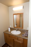 Bathroom in the Agassiz suites